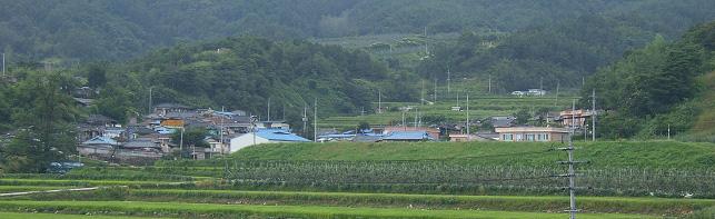 대촌(大村)마을 전경