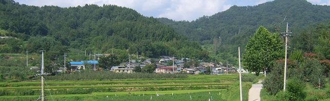 아주(鵝洲)마을 전경
