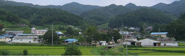 대곡(大谷)마을 전경
