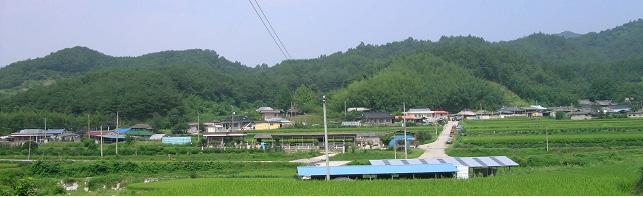 월곡(月谷)마을 전경