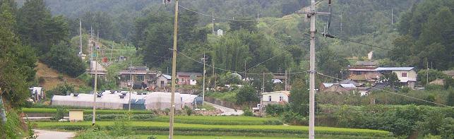 오가(五可)마을 전경