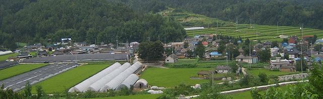 자하(紫霞)마을 전경
