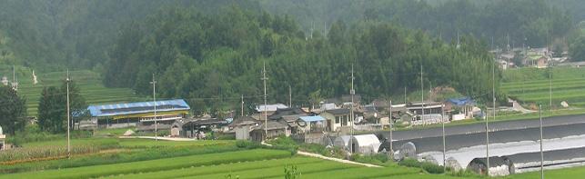 장전(墻田)마을 전경